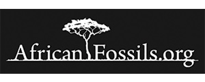 African Fossils